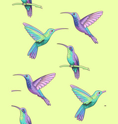flying hummingbirds vector image