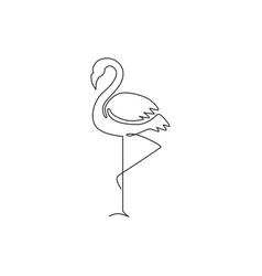 one single line drawing beauty exotic flamingo vector image