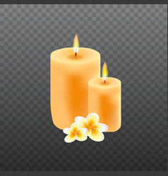 Realistic candles with plumeria flowers vector