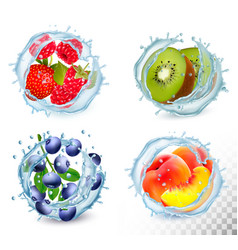 set different water splashes with fruit and vector image