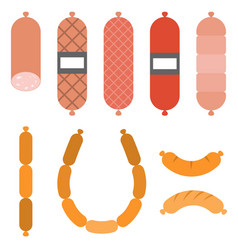 various sausages vector image