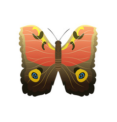 Colorful butterfly with abstract decorative vector