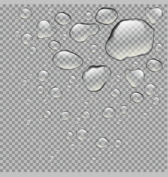 realistic water drops isolated vector image