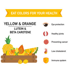 eat colors for your health vector image vector image