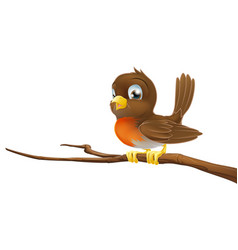 cute robin sitting on a tree branch vector image