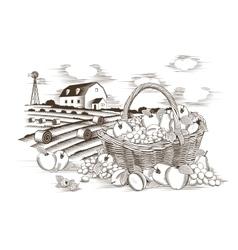 Fruits Basket And Farm vector
