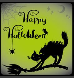 halloween with black cat vector image