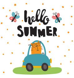 summer cat vector image