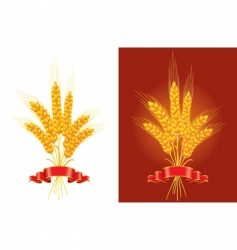 golden wheat vector image vector image