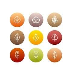 autumn leaves icons set vector image