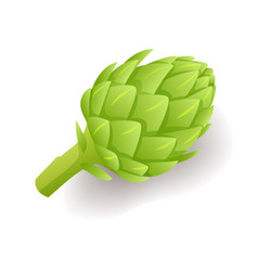 green artichoke icon fresh natural vegetable vector image