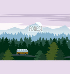 Highway drive with beautiful spruce forest vector