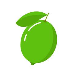 lime icon citrus fruit vector image