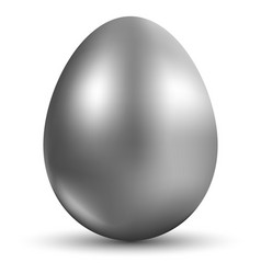 silver egg isolated on white background for vector image