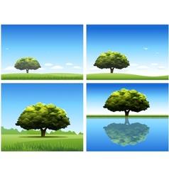 oak tree background vector image vector image