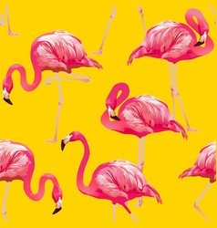 tropical bird flamingo background seamless pattern vector image vector image