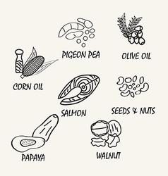 Food elements vector