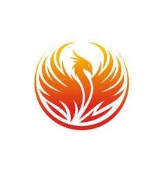 modern flaming phoenix logo designs template vector image