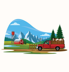 Pick up truck transporting the cow on the farm vector