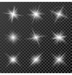 Set glowing lights stars and sparkles isolated vector