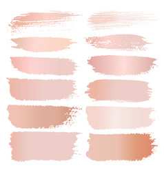 Set of brush stroke pink gold grunge vector