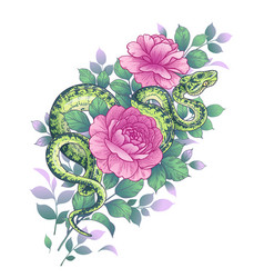 twisted snake and pink rose flowers vector image
