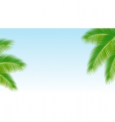 palm branches against the blu vector image vector image