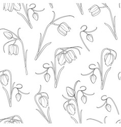 floral spring seamless pattern tulip flowers vector image