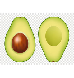 Fresh avocado with transparent background vector