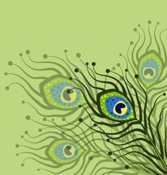 green background with peacock feathers vector image