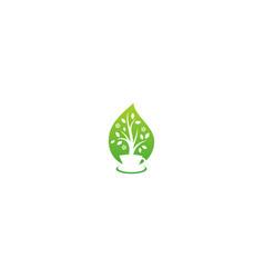 green tea organic nature logo vector image