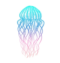 Jellyfish in line art style Ocean elements vector image