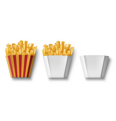Potatoes french fries in paper box isolated vector