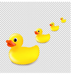 rubber ducks isolated transparent background vector image