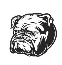 Vintage angry bulldog head vector