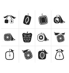 Silhouette Abstract square fruit icons vector image vector image