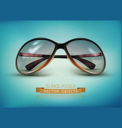 sunglasses isolated on a blue background vector image