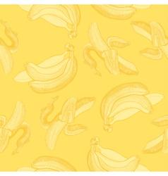 Bananas engraving drawing vector image vector image
