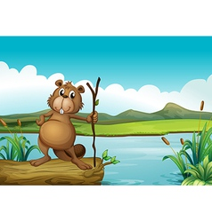 A beaver at the river vector image