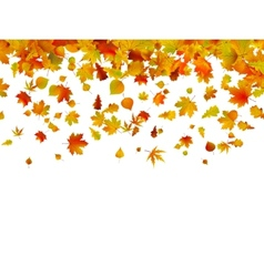 background autumn leaves eps 8 vector image