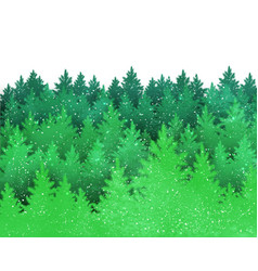 Background with green spruce forest silhouette vector