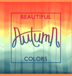 beautiful autumn colors vivid landscape vector image