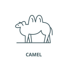 camel line icon linear concept outline vector image