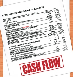 Cash Flow Rubber Stamp text On Statement vector image