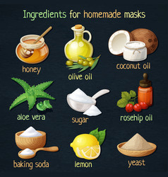 Natural mask ingredients for home face skin care vector