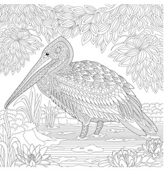 Pelican or crane bird adult coloring page vector