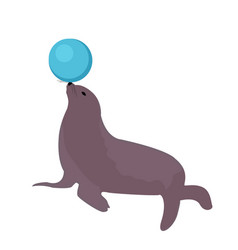 Sea lion with a ball circus icon flat style vector