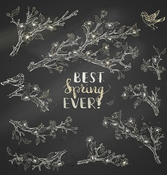 set of chalk spring branches on blackboard vector image