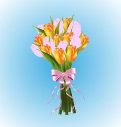 Tulips bouquet vector