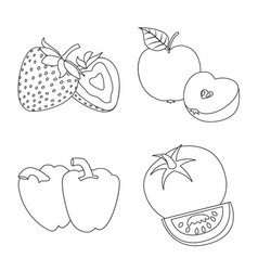 vegetable and fruit symbol vector image